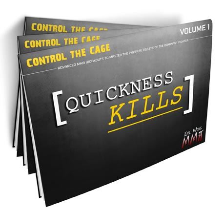 quickness-kills-3d-cover-small